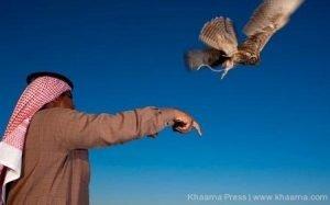 rare birds hunt in Afghanistan