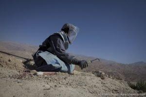 deminers killed in Herat