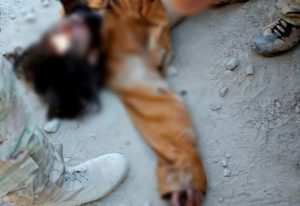 Taliban killed in Afghanistan_censored